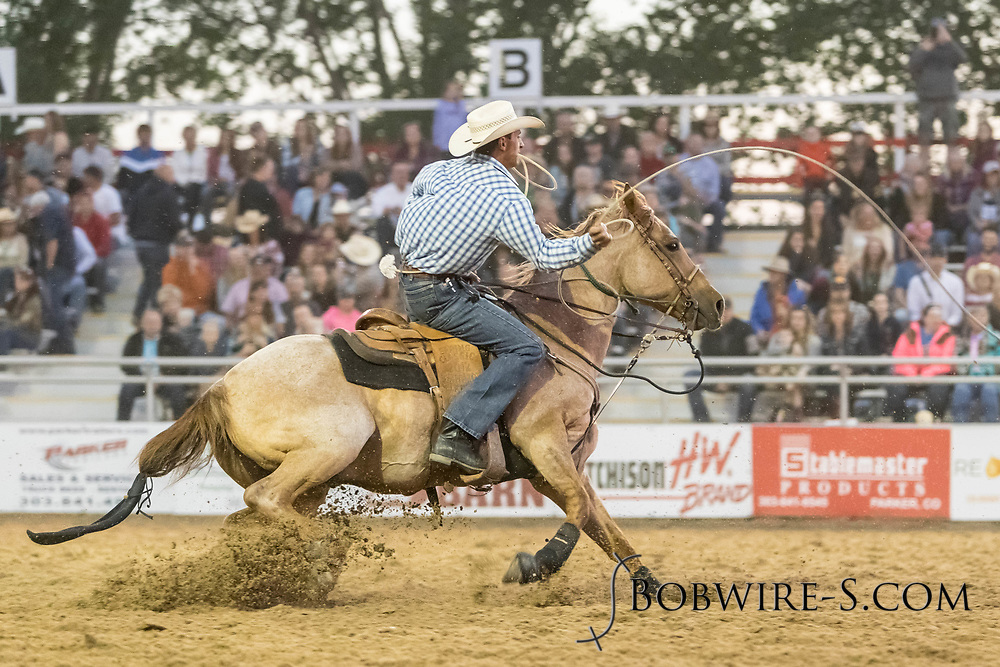Tie-down roper Ryan Canty makes his run during the second performance of the Elizabeth Stampede on Saturday, June 2, 2018.