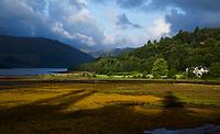 STRONTIAN , SCHOTLAND.- Loch Sunart. Drooggevallen bij eb.  COPYRIGHT KOEN SUYK