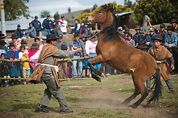 Concurso de doma de potros en Ñuñunhuaycco, Ayacucho.