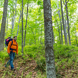 A man and his young daughter explore the woods in Epping, New Hampshire.