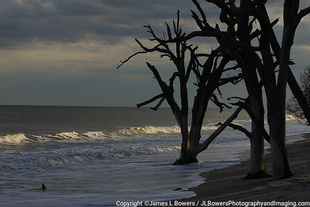 Botany Bay Boneyard Beach Afternoon Storm