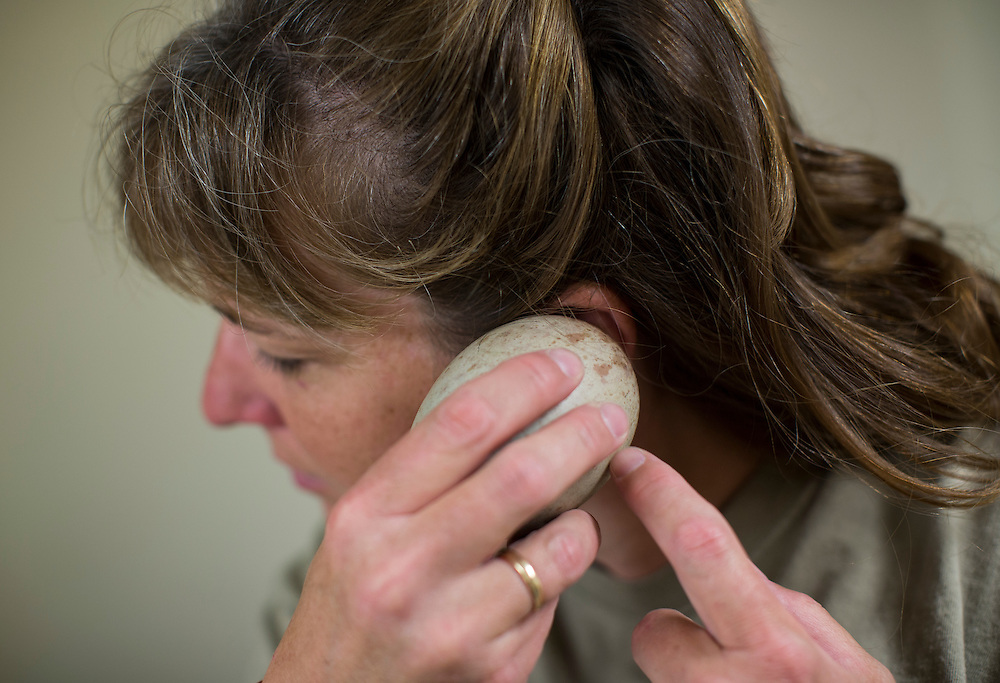"""Kelly Maguire, aviculturist at the International Crane Foundation, listens for sound as she scratches a Whooping Crane egg.  The International Crane Foundations Direct Autumn Release program reintroduces the endangered Whooping Crane into the wild.  """"Hatch to Release"""", is the story of Whooping Crane reintroduction."""