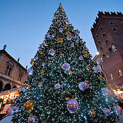 VERONA, ITALY - DECEMBER 04: Lights are shining on a big Christmas tree in Piazza dei Signori at Verona Christmas Market on December 4, 2010 in Verona, Italy. Christmas markets, fairs, lights and nativity scenes fill Northern Italian cities and villages from December through January 6.
