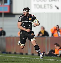 Don Armand of Exeter Chiefs.  - Mandatory byline: Alex Davidson/JMP - 12/03/2016 - RUGBY - Sandy Park -Exeter Chiefs,England - Exeter Chiefs v Newcastle Falcons - Aviva Premiership