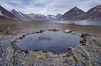 Hot springs at a geothermal area in Rømer Fjord in East Greenland.