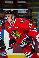 KELOWNA, CANADA - APRIL 7: Jake Gricius #14 of the Portland Winterhawks warms up against the Kelowna Rockets on April 7, 2017 at Prospera Place in Kelowna, British Columbia, Canada.  (Photo by Marissa Baecker/Shoot the Breeze)  *** Local Caption ***