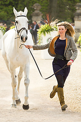 Louisa Milne Home (GBR) leads King Eider for the vet's inspection during the trot up at the 2013 Mitsubishi Motors Badminton Horse Trials. Thursday 02  May  2013.  Badminton, Gloucs, UK..Photo by: Mark Chappell / i-Images