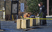 WASHINGTON (Jan 4, 2017) -- A D.C. Metro Police K9 and handler check out a suspiciously stashed violin case that was found containing two firearms near Fletcher's Cove Boathouse on the C&O Canal late Wednesday morning Jan. 4, 2017.  More guns and ammunition were also found around the area.  Photo by Johnny Bivera