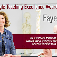 2017 UWL Eagle Teaching Excellence Awards