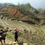 Vietnam Sapa trekking  and Lung Khau Nhin Market