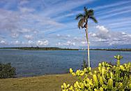 Cabańas area, Artemisa, Cuba.