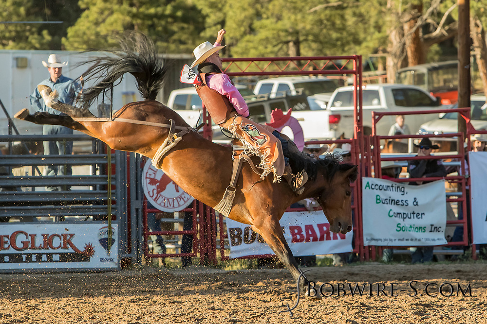 Bareback bronc rider Jake Brown rides Summit Pro Rodeo's Armed and Dangerous in the second performance of the Elizabeth Stampede on Saturday, June 2, 2018.