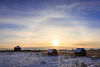 A glowing halo around the sun on an icy cold day in winter.<br /> <br /> &copy;2015, Sean Phillips<br /> http://www.RiverwoodPhotography.com