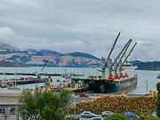 Lyttelton Harbour, Christchurch, South Island, New Zealand