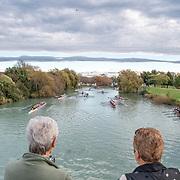 Cure Bridge to Bridge 2019 (NZL)