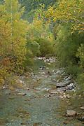 River Arazas, Huesca Pyrenees, Ordesa National Park, Aragon, Spain, Europe
