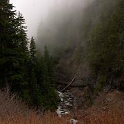 View from Narada Falls viewpoint - Mt. Rainier National Park, WA
