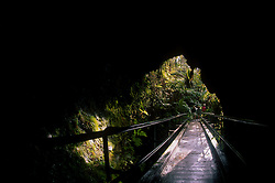 Thurston Lava Tube Entrance, Big Island, Hawaii, US