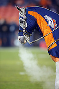 Thunder, the Denver Broncos horse mascot, exhales a cloud of steam on a cold night during the Denver Broncos 2015 NFL week 16 regular season football game against the Cincinnati Bengals on Monday, Dec. 28, 2015 in Denver. The Broncos won the game in overtime 20-17. (©Paul Anthony Spinelli)
