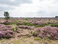 Hardenberg, Overijssel, Netherlands