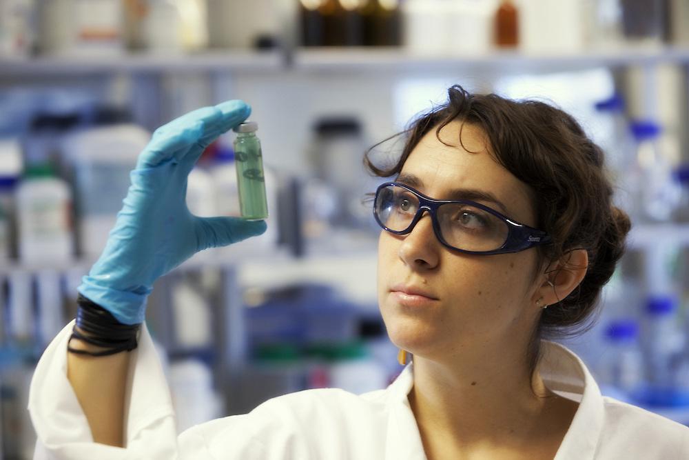 University of Exeter - Greenpeace Lab