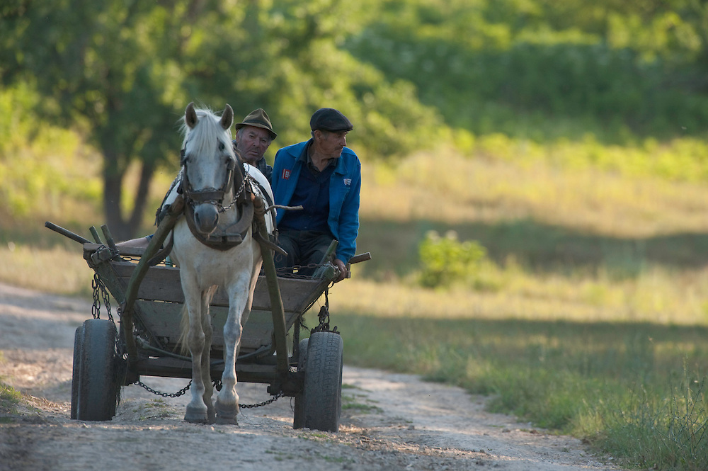 Portrait of local people, farmers, near Codrii National in central Moldova
