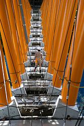 Construction of Yamashiro Bridge on Shikoku Island in Japan . Bridge is an innovative stressed ribbon steel and concrete composite bridge crossing a deep valley.