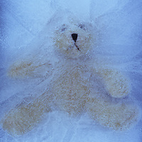 Pale beige teddy bear with sad face trapped in ice