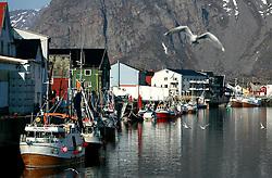 NORWAY LOFOTEN 27MAR07 - General view of Henningsvaer port on the Lofoten islands...jre/Photo by Jiri Rezac..© Jiri Rezac 2007..Contact: +44 (0) 7050 110 417.Mobile:  +44 (0) 7801 337 683.Office:  +44 (0) 20 8968 9635..Email:   jiri@jirirezac.com.Web:    www.jirirezac.com..© All images Jiri Rezac 2007 - All rights reserved.
