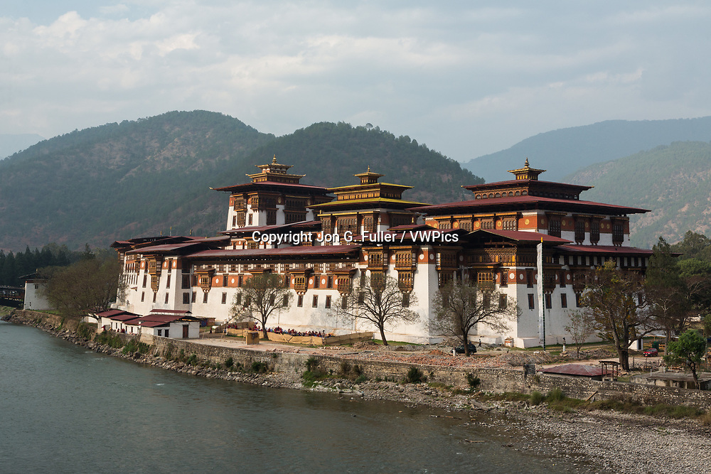 Punakha Dzong and the Mo Chhu River.  Punakha, Bhutan.