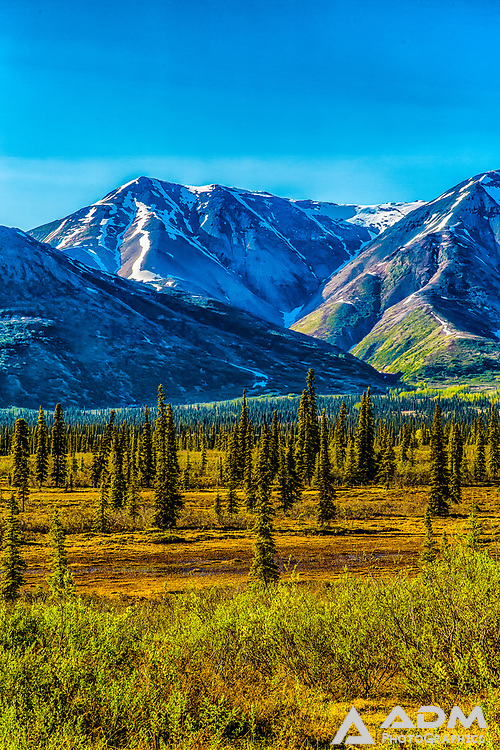 View looking at the Alaska Range from Broad Pass, south of Cantwell, Alaska