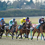 Lingfield 20th February