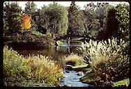 Man on wooden bridge overlooking pond in Japanese Garden at Missouri Botantical Garden;fall. Missouri