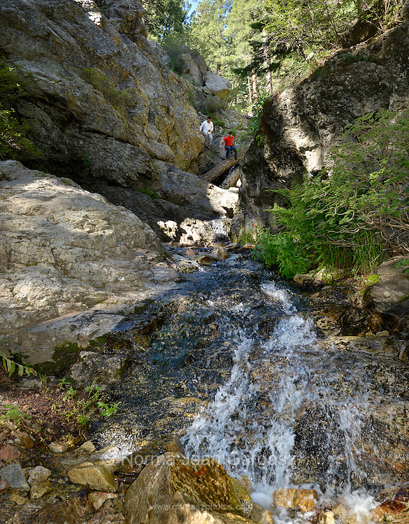 Hikers enjoy Post Creek located at Mount Graham in the Pinaleño Mountains of the Coronado National Forest about 40 miles southwest of Safford, Arizona, USA.