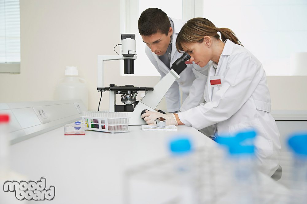 Two scientists using microscope in laboratory