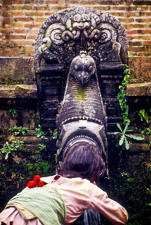 A  woman drinks from a splendidly carved stone fountain in Patan, the second largest city in Nepal. This is part of an ancient system of waterworks and aqueducts in the Kathmandu Valley. The head of the fountain is carved in the shape of a makara, a mythological beast, apparently part crocodile and part bird, that is said to have inhabited the valley in prehistoric times, when it was a lake.