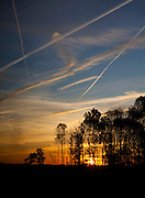 Contrails from airliners, at sunset in Flevoland, the Netherlands. Copyright Dave Walsh 2011, davewalshphoto.com