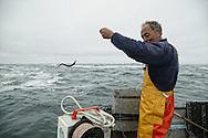 sea bass fishing at Belle ile
