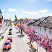 Rådhusgata Flowerstreet Kristiansand