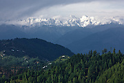 Buy Usage Rights - GettyImages.com<br />