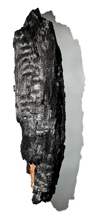 piece of wood partly burned