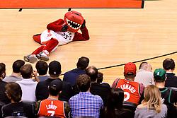 October 19, 2018 - Toronto, Ontario, Canada - Toronto Raptors mascot on the floor  during the Toronto Raptors vs Boston Celtics NBA regular season game at Scotiabank Arena on October 19, 2018 in Toronto, Canada (Toronto Raptors win 113-101) (Credit Image: © Anatoliy Cherkasov/NurPhoto via ZUMA Press)