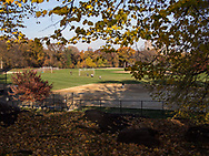 The North Meadow in Central Park