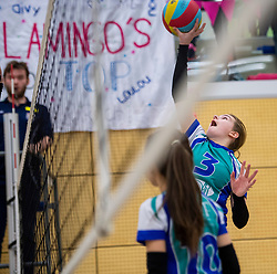31-03-2018 NED: Final D Volleybaldirect Open, Wognum<br /> 16 teams of girls and boys D competed for the Dutch Open Championship / Flamingo