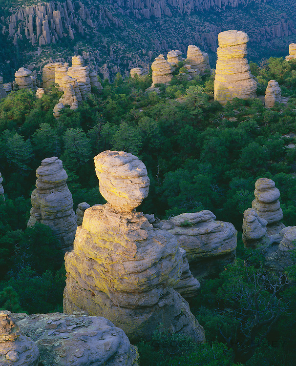 0103-1040B ~ Copyright: George H. H. Huey ~ Standing rocks [rhyolite formation]. Sunrise, Heart-of-Rocks area, along Echo Canyon Trail. Chiricahua National Monument, Arizona.