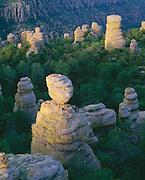 0103-1040B ~ Copyright: George H. H. Huey ~ Standing rocks [rhyolite formation]. Sunrise, Heart-of-Rocks area, along Echo Canyon Trail. Chiricahua National Monument, Arizona.
