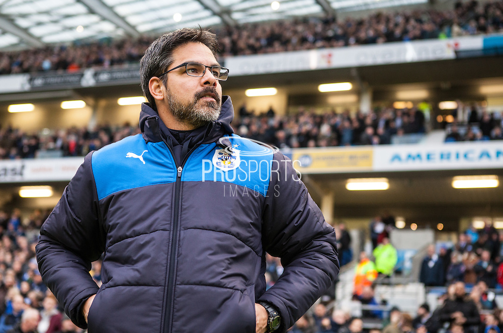 Huddersfield Town Head Coach, Manager, David Wagner during the Sky Bet Championship match between Brighton and Hove Albion and Huddersfield Town at the American Express Community Stadium, Brighton and Hove, England on 23 January 2016. Photo by Bennett Dean.