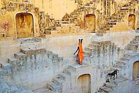 Inde, Rajasthan, Jaipur la ville rose, reservoir d'eau près de Jaipur // India, Rajasthan, Jaipur the Pink city, water tank for rain near Jaipur