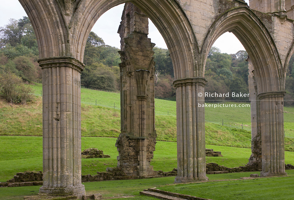 The ruins of the Cistercian order's Rievaulx Abbey in North Yorkshire.