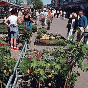 Geraniummarkt 1998 Oostermeent